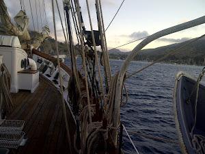 The Irving Johnson Arrives at Catalina Isle