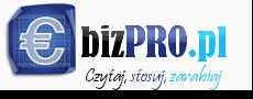 ebizPRO.pl - Praca w domu | Zarabianie przez Internet