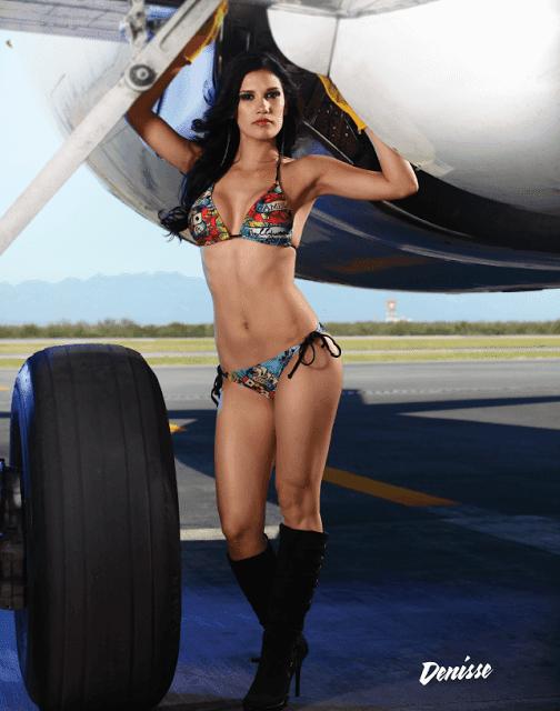 bombastic airlines - Vivaaerobus Calendario 2010