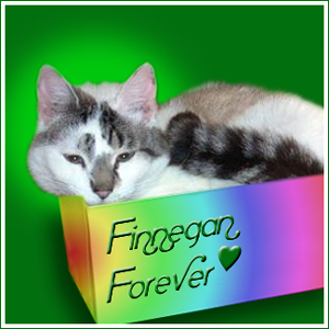 Finnegan  RIP