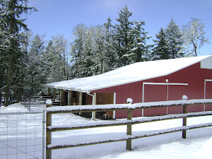 The Barn