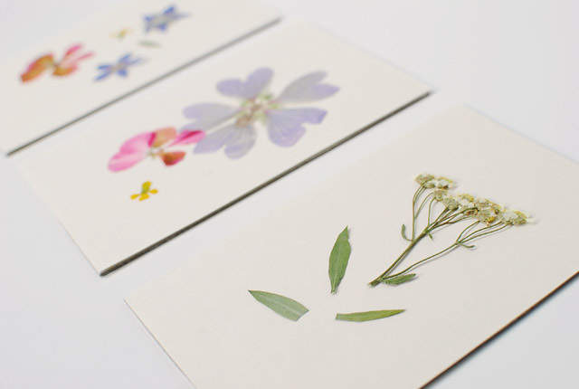 Flower pressed paper choice image flower decoration ideas flower pressed paper images flower decoration ideas flower pressing paper images flower decoration ideas 5 mothers mightylinksfo