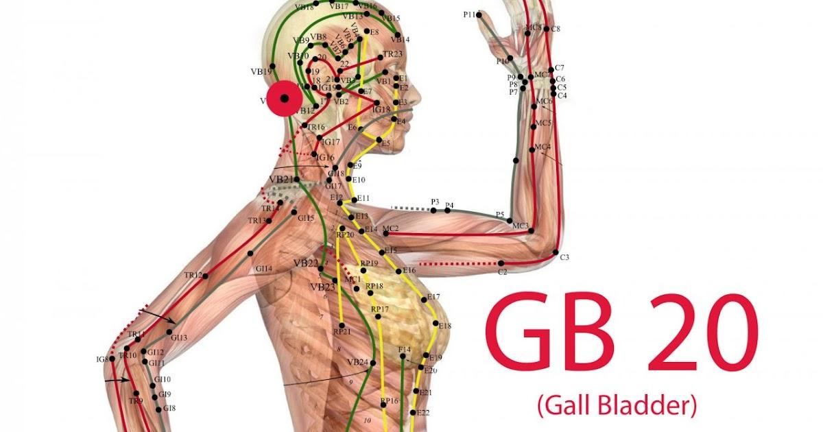 Parkinson Coaching: Die Psychosomatik des Gallenblasen-Meridians