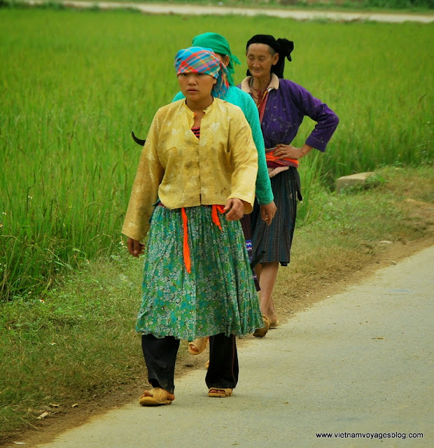 Contempler la voie mystérieuse de Dong Van - Photo An Bui