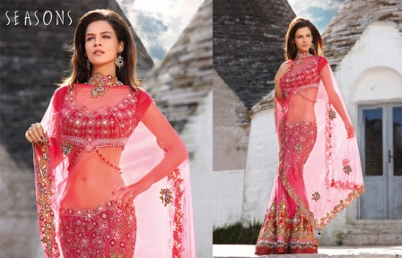 Embroidered-Bridal-Lehenga-Choli
