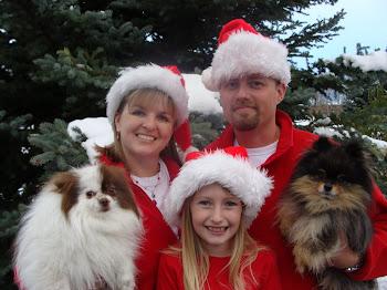 The Grafel Family Christmas 2010