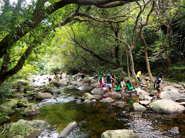 People paddling in the stream near Bride's Pool, in the forest of Plover Cove Country Park, New Territories, Hong Kong