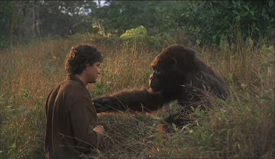 Amy and Peter bromance in Congo 1995 gorilla