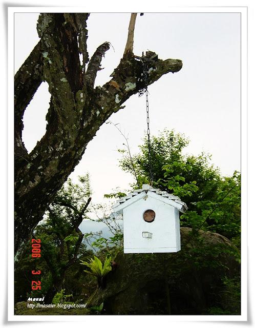 新竹六號花園7