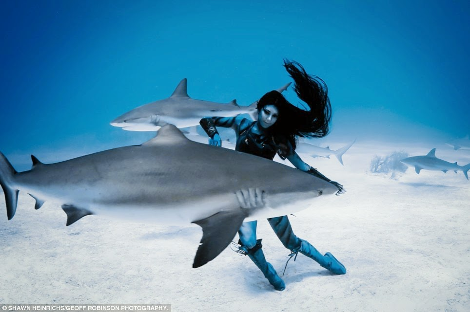 Woman Dances with Tiger Sharks (VIDEO)