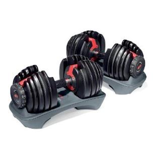 Bowflex SelectTech 552 Best Price