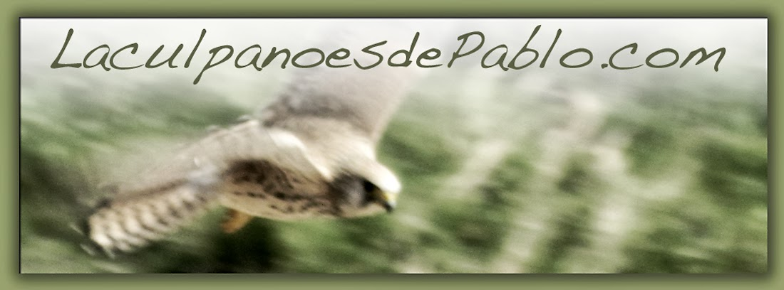 LaculpanoesdePablo.com