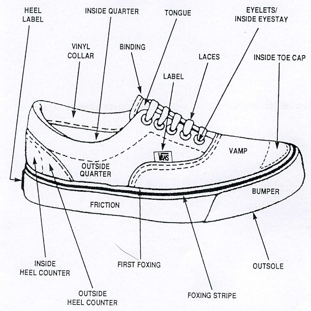 parts of the foot diagram