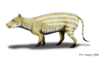 Artyodactila prehistorica Merycoidodon