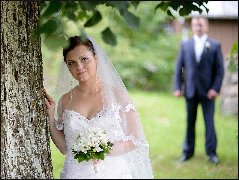 vestuvių fotosesija gamtoje pasvalyje