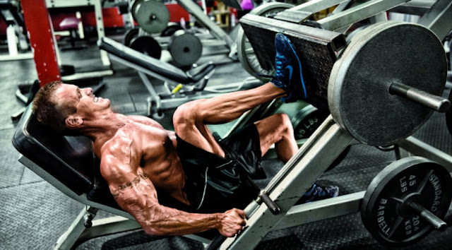 Leg Workout Machine