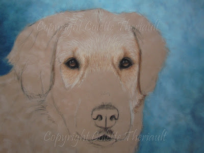 Golden Retriever Painting update on eyes