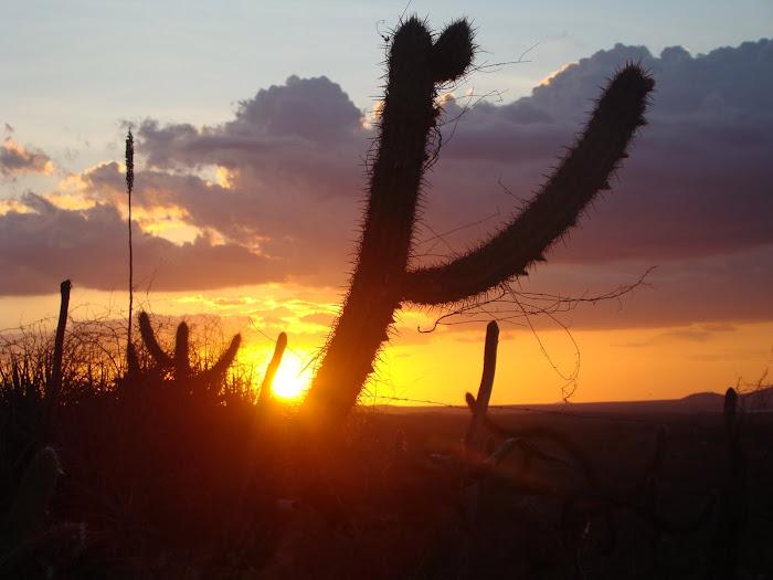 Por-do-sol em Canudos