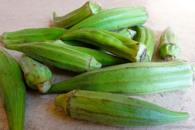 okra - piżmian jadalny