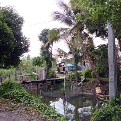 Nong Chok District Zashnain