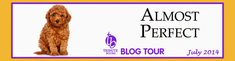 Almost Perfect Blog Tour
