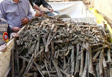 Remains of 282 Indian Soldiers from 1857 revolt dug out from a well in Punjab