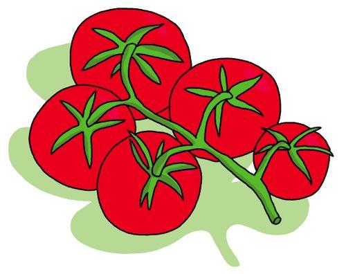Madame truc comment conserver les tomates enti res - Comment conserver les tomates du jardin ...