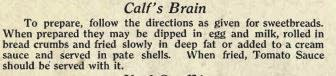 Calf Brain Recipe
