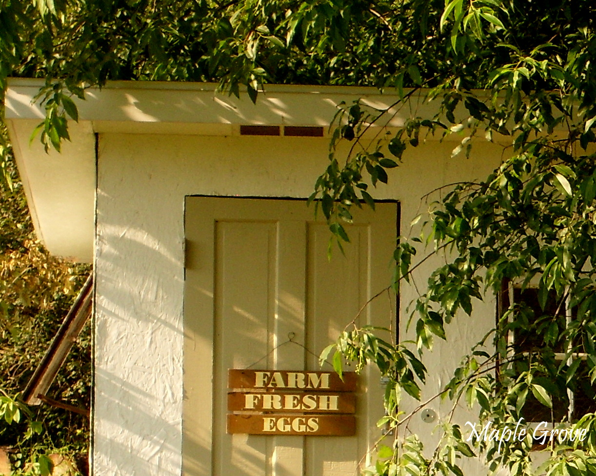 Maple Grove Vintage Hen House Design