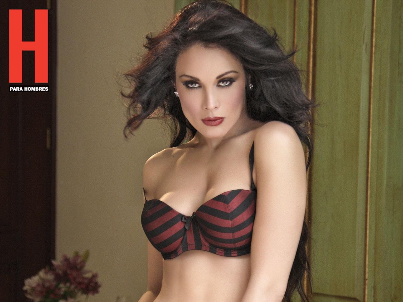 http://3.bp.blogspot.com/-dLFa6v9lZ9Q/TmVjDEh3moI/AAAAAAAAAAs/2r8tgZV61Fo/s1600/No.+148+-+Septiembre+2011+%25283%2529.jpg