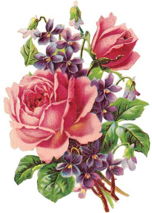 Dolce Prugne Flores Con Estilo Vintage