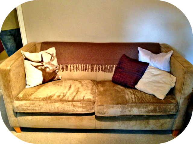 cute sofa with Matalan Stag cushion