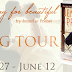 Exclusive Excerpt and Giveaway: SEARCHING FOR BEAUTIFUL by Jennifer Probst