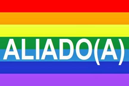 aea2554cfc O que posso fazer  Ideias para Aliados dos LGBT
