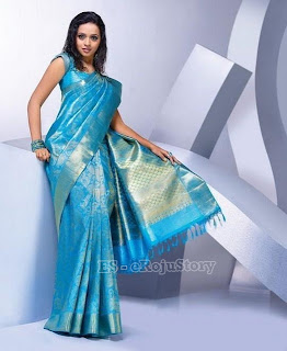 hot and sexy Bhavana In Saree mediafire picture photo wallpapers download{ilovemediafire.blogspot.com}