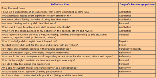 johns model of structured reflective essay example