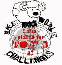 Top 3 Winner at Ike's World Challenge Blog
