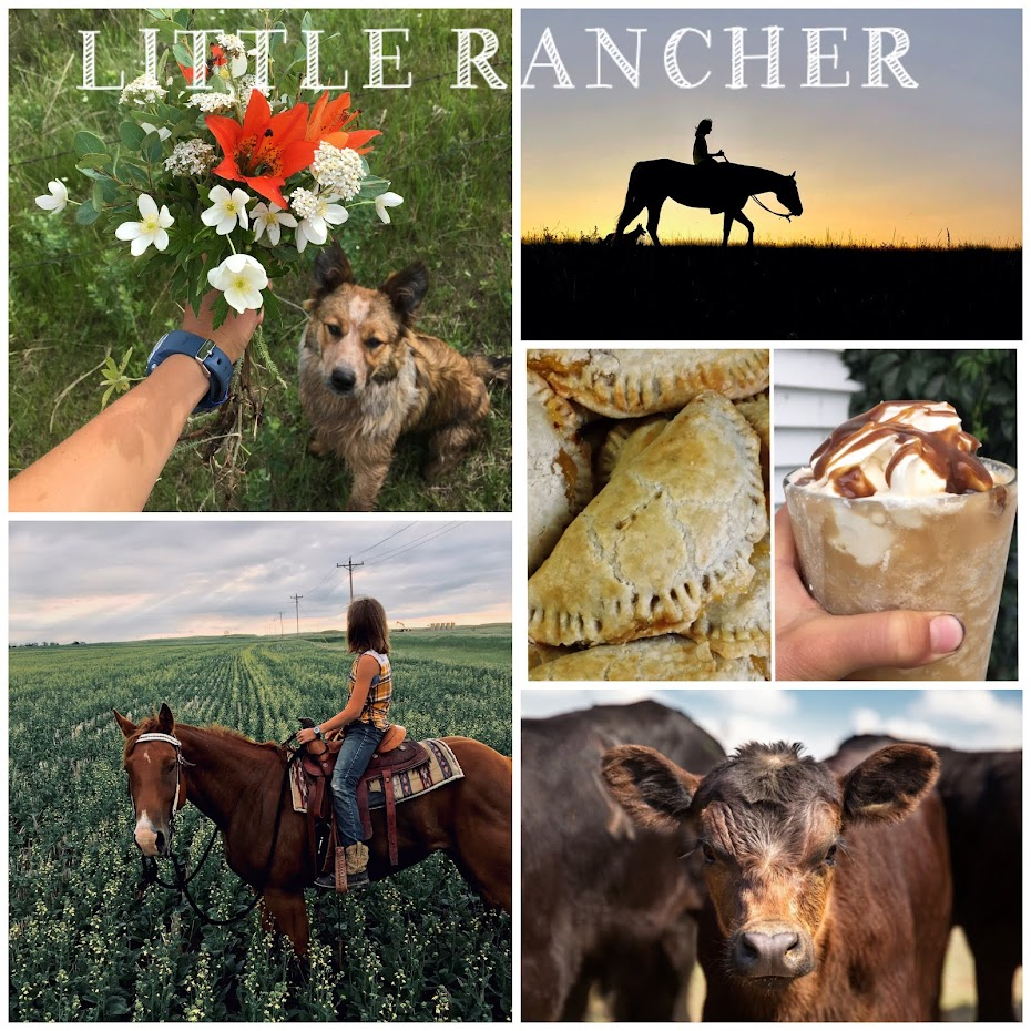 Little Rancher
