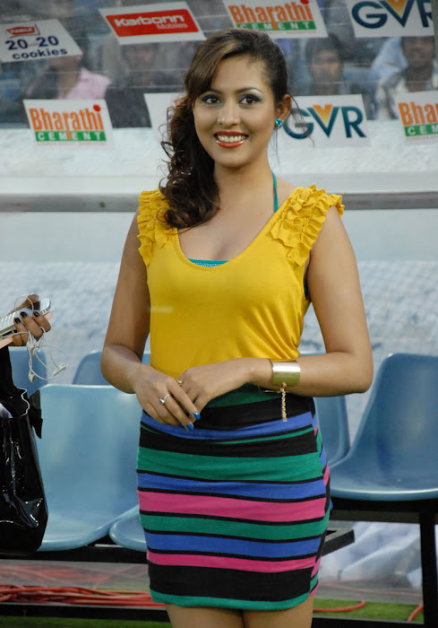 madhu shalini at ccl 2 final match