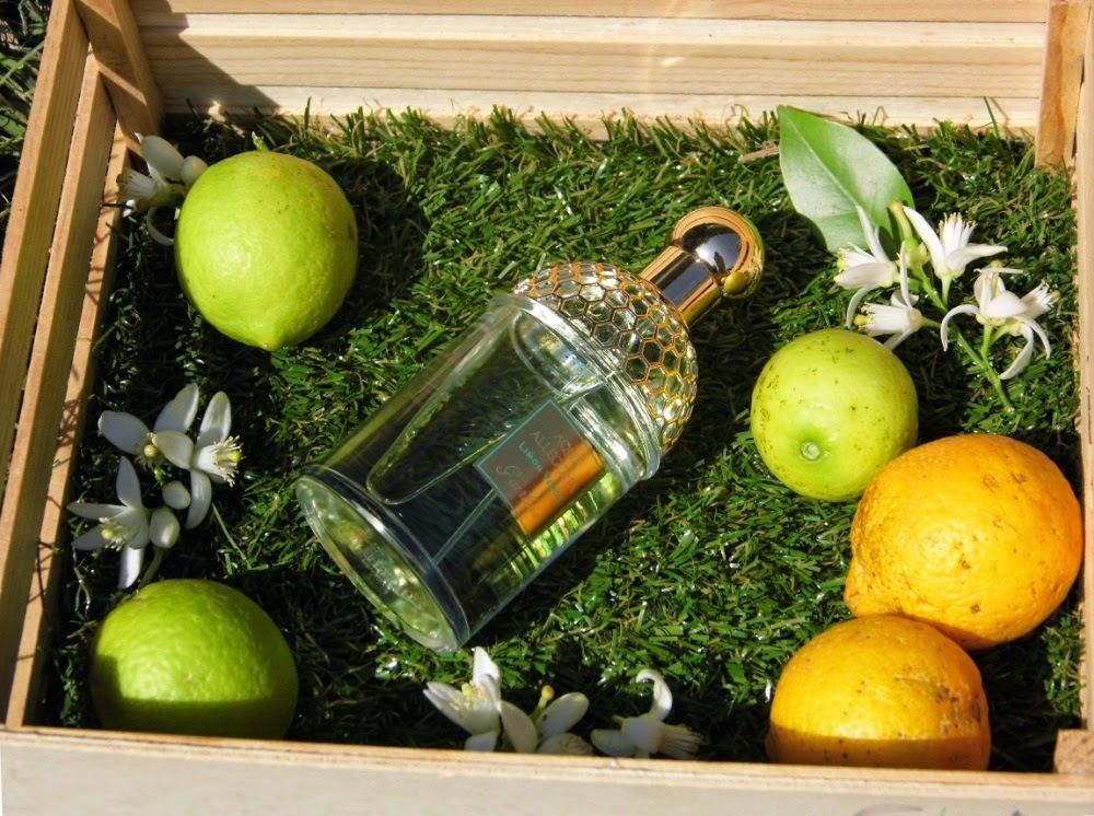 Aqua Allegoria - Limón Verde
