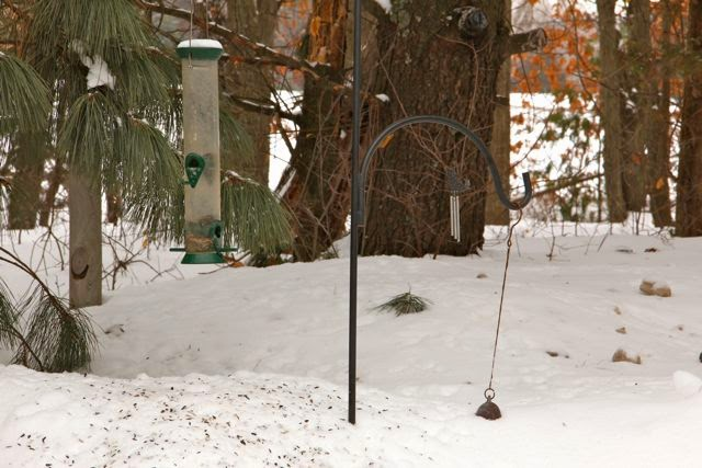 March 4, 2014: 91/2 inch gap under the feeder