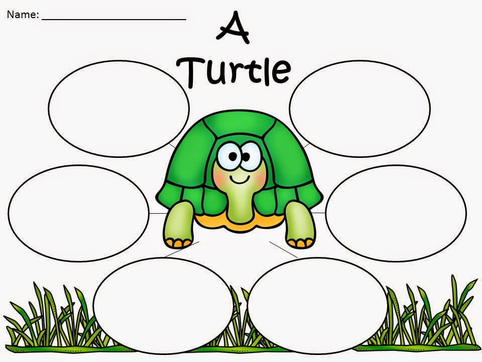 http://www.teacherspayteachers.com/Product/A-FREEBIE-Have-A-Turtle-rific-Summer-Everyone-Three-Graphic-Organizers-1289513