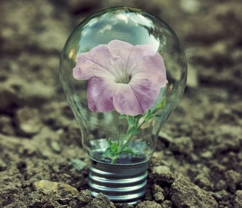 05-Photographer-Adrian-Limani-Life-in-a-Lightbulb-www-designstack-co