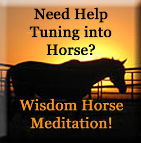 Change your Life with Horse Wisdom