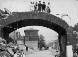 Puente Cutrifera