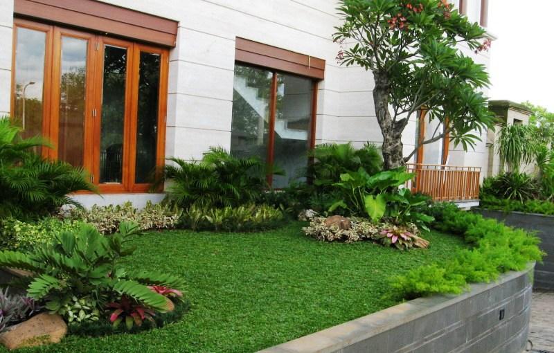 Download image Desain Taman Mungil Sejuk Pelauts Com PC, Android ...