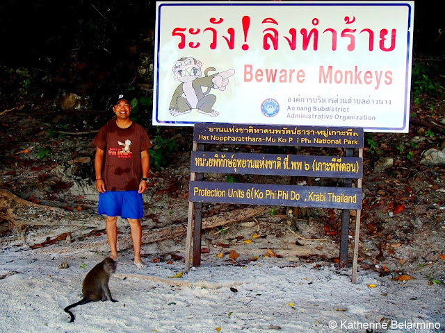 Monkey Beach, Ko Phi Phi Don, Krabi, Thailand