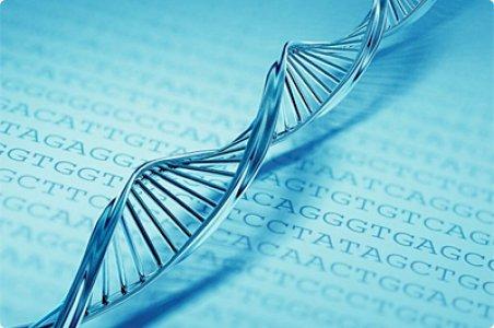El ADN es Influenciado por las Palabras y las Frecuencias