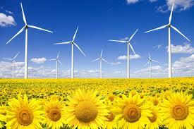 cursos energias renovables