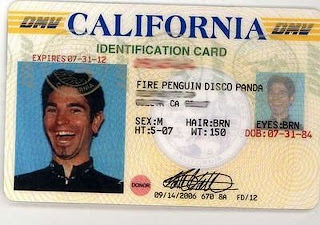 fire penguin disco panda